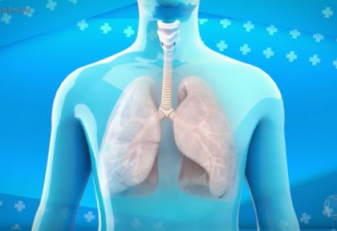 Veja como prevenir as doenças respiratórias