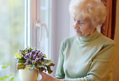 PODCAST: Como viver mais e com saúde